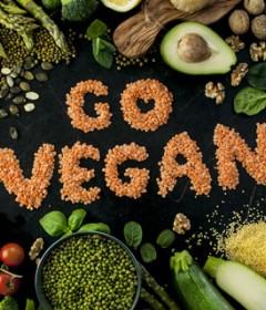 Vegan Ürün